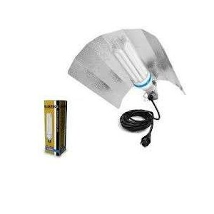 Kit CFL 200w Bombilla Mixta