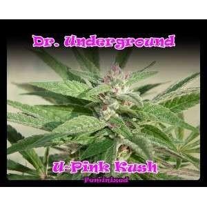 U-Pink Kush