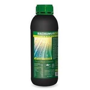 Bachumus Evolution-C 20 Lts Trabe