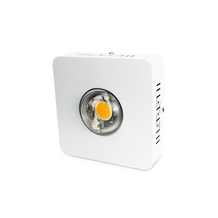 LED Agrolite