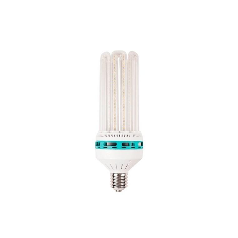 Bombilla LED Solux Crecimiento