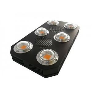 LED Innotech Proton Plus