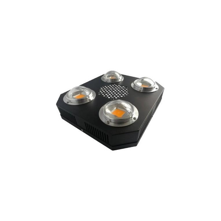 LED Innotech Proton Plus
