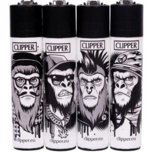 Clipper Monkeys