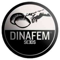 Dinafem Auto