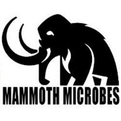 Mammoth Microbes