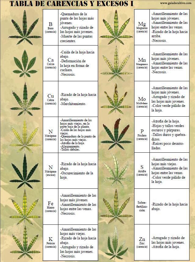 tabla de carencias marihuana