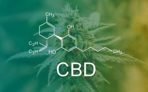 Autoflorecientes con alto CBD