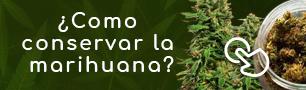 Como conservar marihuana