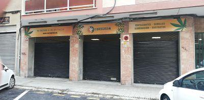 Grow Shop Mallorca Tienda entrada
