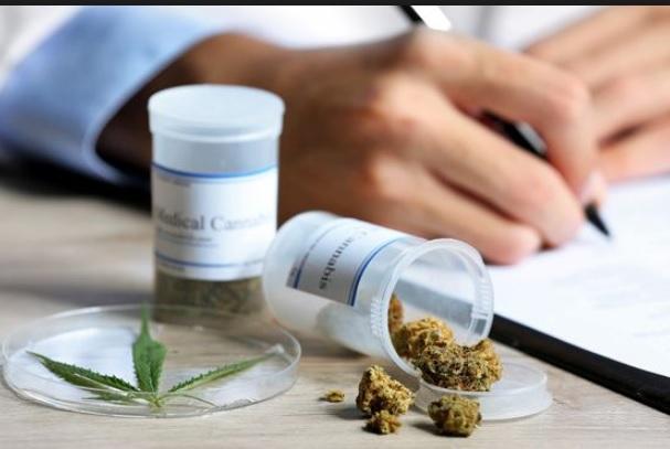 Mejores Marihuanas Medicinales