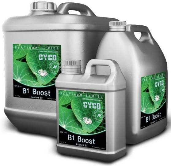 b1 boost cyco