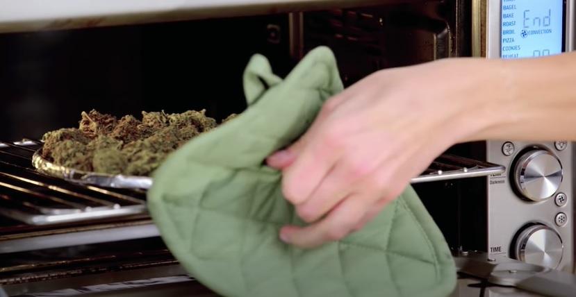 tintura marihuana