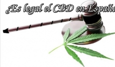 CBD Legal España